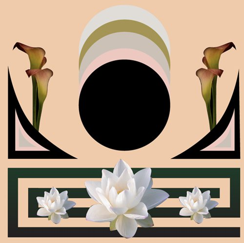 Step into Spring: Embrace the Power of the New Moon with These Intuitive Tarot Readings
