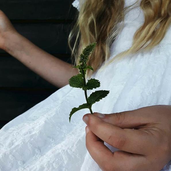 5 Simple Tricks to Make Your Spiritual Toolkit More Environmentally Friendly