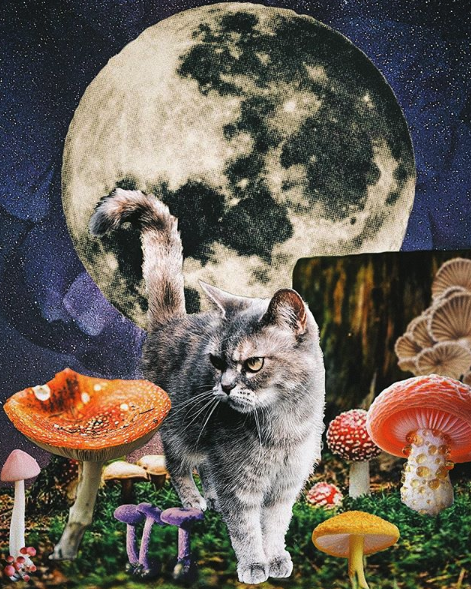 A Full Moon in Aquarius Means Things Are About to Get Weird