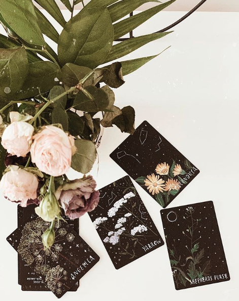 Your Scorpio Season Tarot Pull Is Here to Help You Rise Above and Bloom