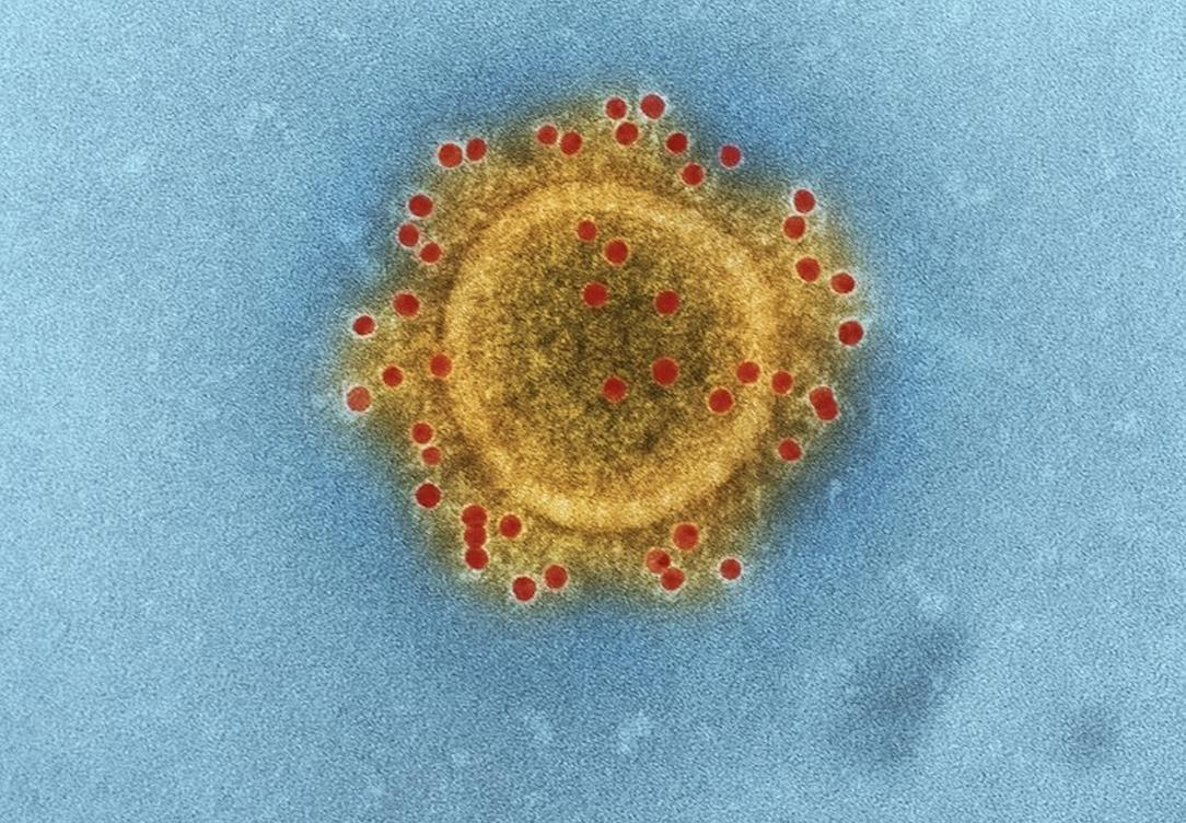 The Astrology of Coronavirus: Analysis and Future Predictions
