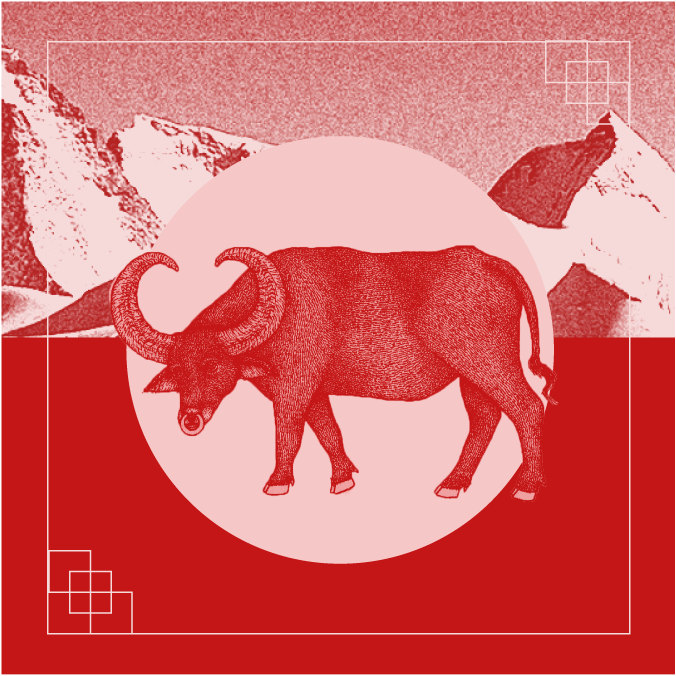 2021 Chinese New Year: A Zodiac Guide to the Year of the Metal Ox